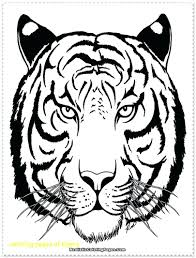 snow tiger coloring page coloring page coloring pages of tigers perfect pictures snow