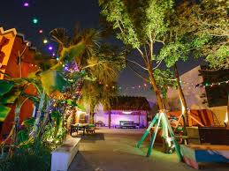 The Landscape Lighting Book Rd Edition - time out miami miami events attractions u0026 things to do