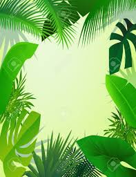 jungle backdrop forest clipart jungle backdrop pencil and in color forest