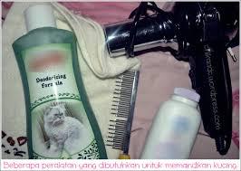 Hair Dryer Khusus Kucing cat memandikan kucing