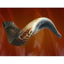 how much is a shofar shofar store ahuva
