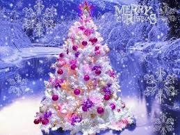 52 beautiful merry pictures to