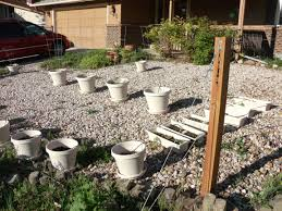 Maintenance Free Backyard Ideas Maintenance Free Landscaping Ideas The Art Of Being Cheap