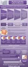 97 best nursing kidney images on pinterest nursing schools