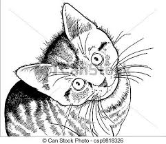 clip art vector of realistic drawing of a kitten detailed hand