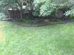 edging flooded garden and lawn ask an expert