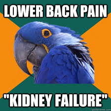 Back Pain Meme - refs shopping lists sciatica jokes