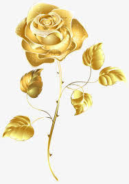 gold flowers a gold color gold flowers png image and clipart for