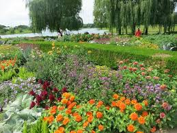 Chicago Botanic Garden Membership Beautiful Summer Flowers In Bloom Picture Of Chicago Botanic