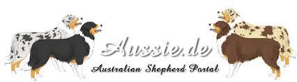 australian shepherd zucht deutschland züchter aus bayern australian shepherd aussie de