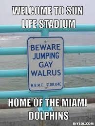 Funny Miami Dolphins Memes - funny dolphin meme