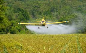aerial applicator license