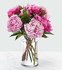 peonies delivery peonies flower delivery peonies delivery from ftd