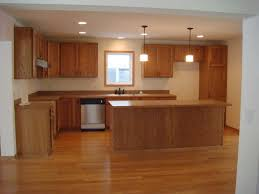 Best Flooring With Dogs Kitchen Best Flooring For Kitchen With Dogs And Kids Rental Bath