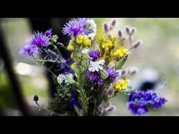 Flowers By Violet - forever flowers by xochitl dixon youtube