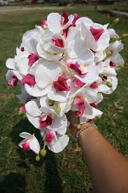 fuchsia and white butterfly orchid cascade bouquet 2464726 weddbook
