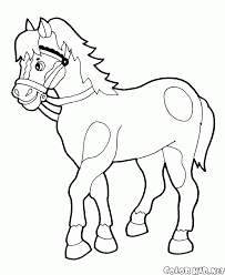 coloring page horse walks
