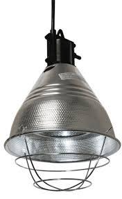 250 watt infrared heat l bulb halogen infrared heat l and bulbs from neogen jeffers pet