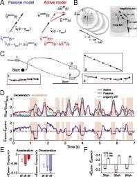 3f si e social discrete modes of social information processing predict individual