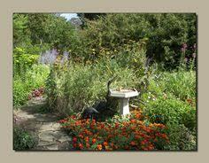 garden plan from michigan bulb co for a butterfly garden east