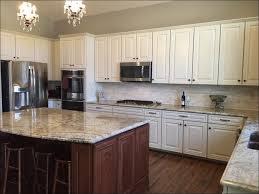 kitchen fabulous dark kitchen cabinets wall color kitchen wall