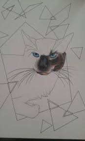 my cat u2022 art amino