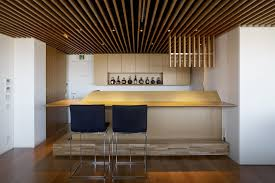 Decorated Ceiling Home Design Bar Decorated Among Modern Minimalist Furniture