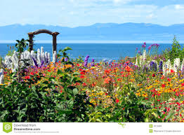 amazing flower garden royalty free stock photos image 2945048