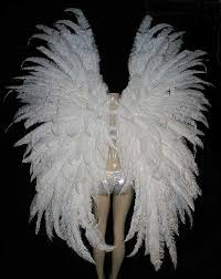 large feather fans prime quality ostrich feather headdresses feather fantail