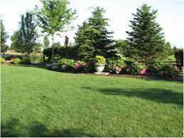 Privacy Garden Ideas Garden Design Ideas For Privacy Beautiful Backyards Winsome