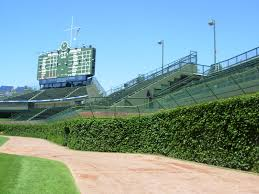 wrigley field ivy wallpaper wallpapersafari wrigley field ivy we walked to the gorgeous ivy