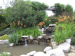 backyard transformation ideas create your backyard oasis