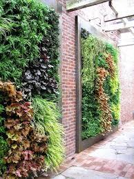 diy living garden walls from good earth plant company seasons