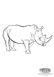 mammals coloring pages rhino rhinoceros coloring animals my coloring page free