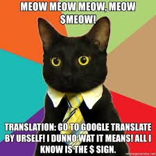 Meme Translation - meow meow meow meow meow translation go to google translate by