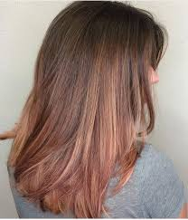 rose gold lowlights on dark hair rose gold with brown hair what i don t want hair pinterest