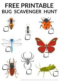 bug scavenger hunt free printable kids outdoor activity