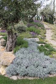 Rock Gardens Images by Diy Rock Garden I Like The Use Of Different Kinds Home Garden Trends