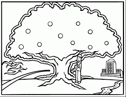 beautiful oak tree clip art black and white with tree coloring