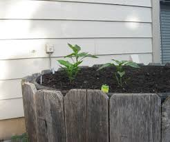 Raised Bed Gardening Build A Raised Bed Garden From Tires 9 Steps With Pictures