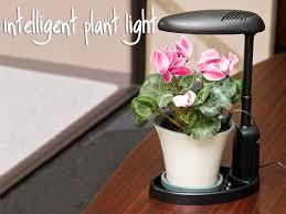 Indoor Garden Supplies - indoor gardening supplies tools for indoor container gardening