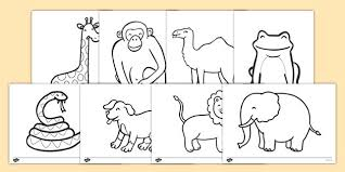 zoo coloring pages preschool zoo coloring pages dear zoo colouring sheets more zoo animal