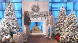ed on air prelit 24 flocked wreath by degeneres page 1