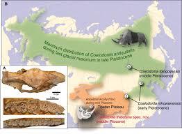 Tibetan Plateau Map Out Of Tibet Pliocene Woolly Rhino Suggests High Plateau Origin