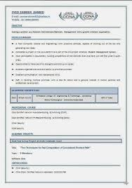 Professional Format Resume Good Leisure Activities For Resume Professional Assignment