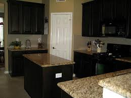 Kitchens With Black Cabinets Kitchen Cabinets Black Appliances Lakecountrykeys Com