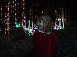 Zoo Lights Houston by Nora U0026 Colin U2013 2012 U2013 December