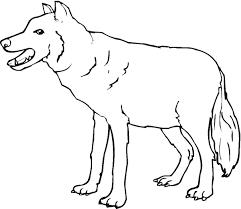 wolves coloring pages coloringsuite
