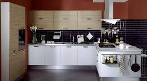 kitchen european kitchen cabinets unique eurostyle kitchen