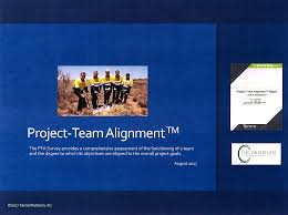project delivery excellence leadership solutions strategy